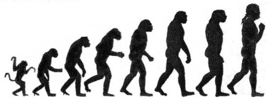 Trwałe zmiany ewolucyjne wymagają czasu.
