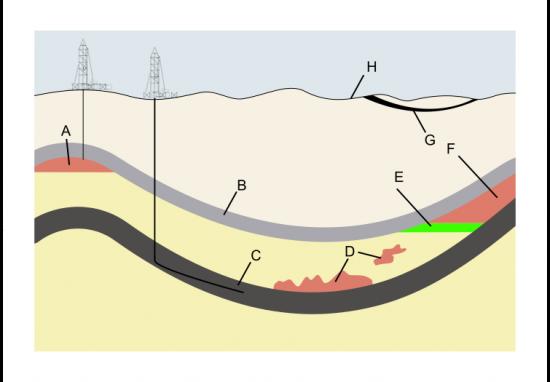 Złoża gazu ziemnego i ropy naftowej.