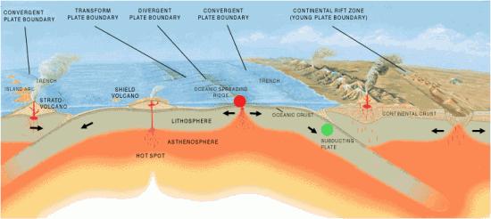 Grzbiety śródoceaniczne i strefy subdukcji.