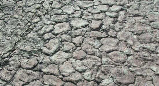 Dewońskie stromatolity.