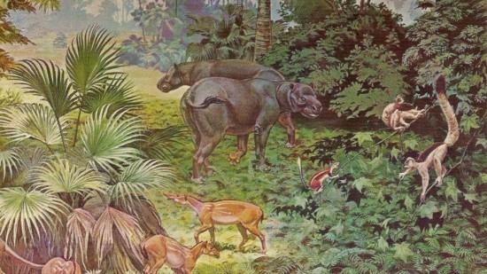 Eocen w Ameryce Północnej.