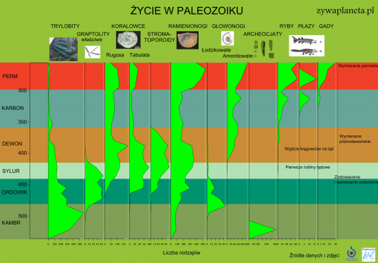 Życie w paleozoiku - infografika.