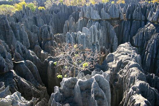 Tsingi na Madagaskarze.