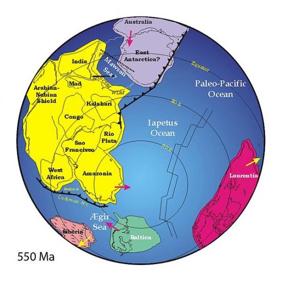 Gondwana 550 mln lat temu - rekonstrukcja.