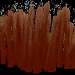 Kolonie gałązkowe koralowców z grupy denkowców (Tabulata) -- rys. Edyta Felcyn.