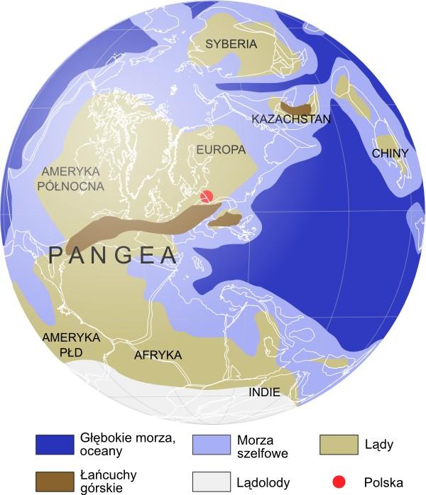 Mapa paleogeograficzna: karbon, 310 mln lat temu.