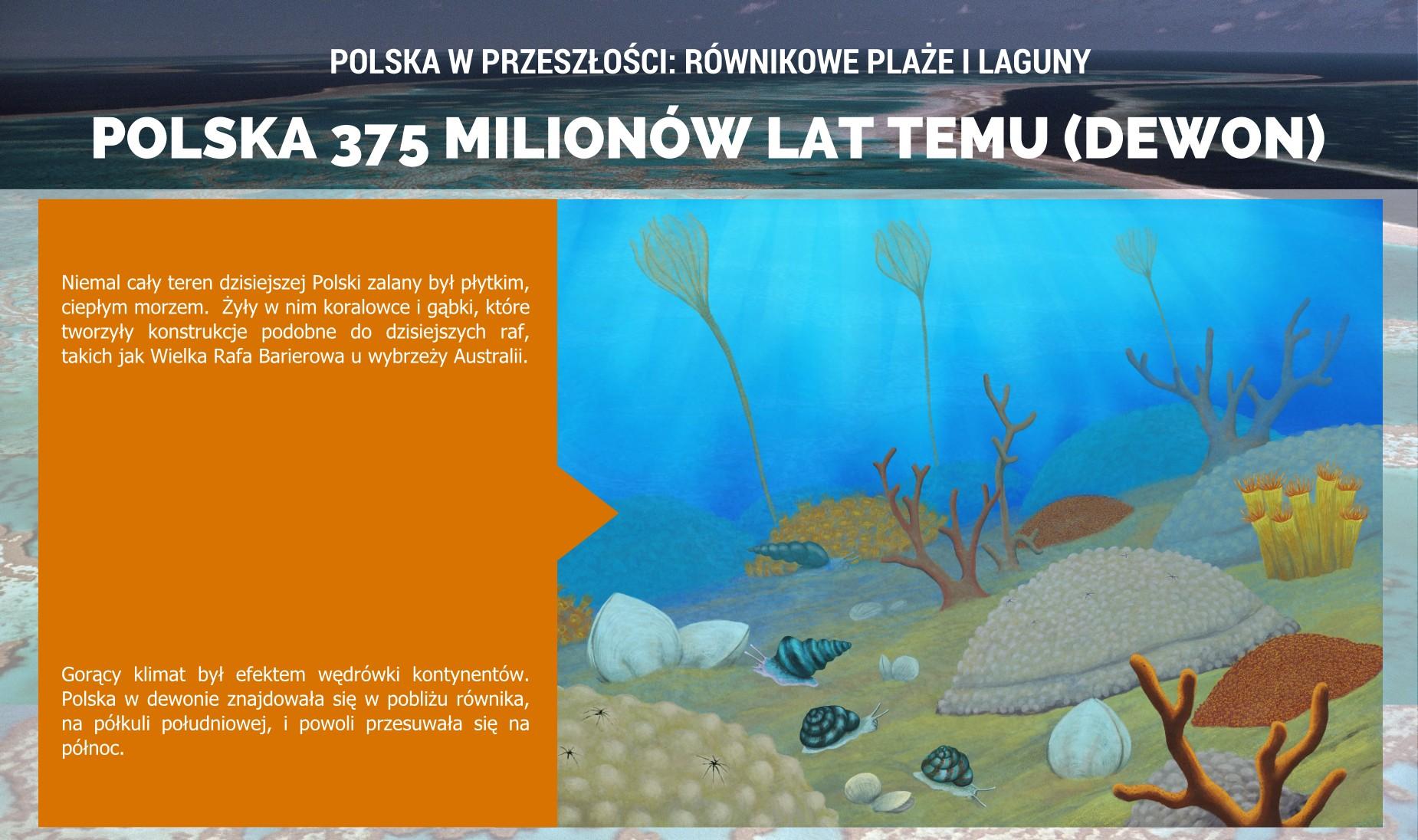 Polska w dewonie -- plakat.