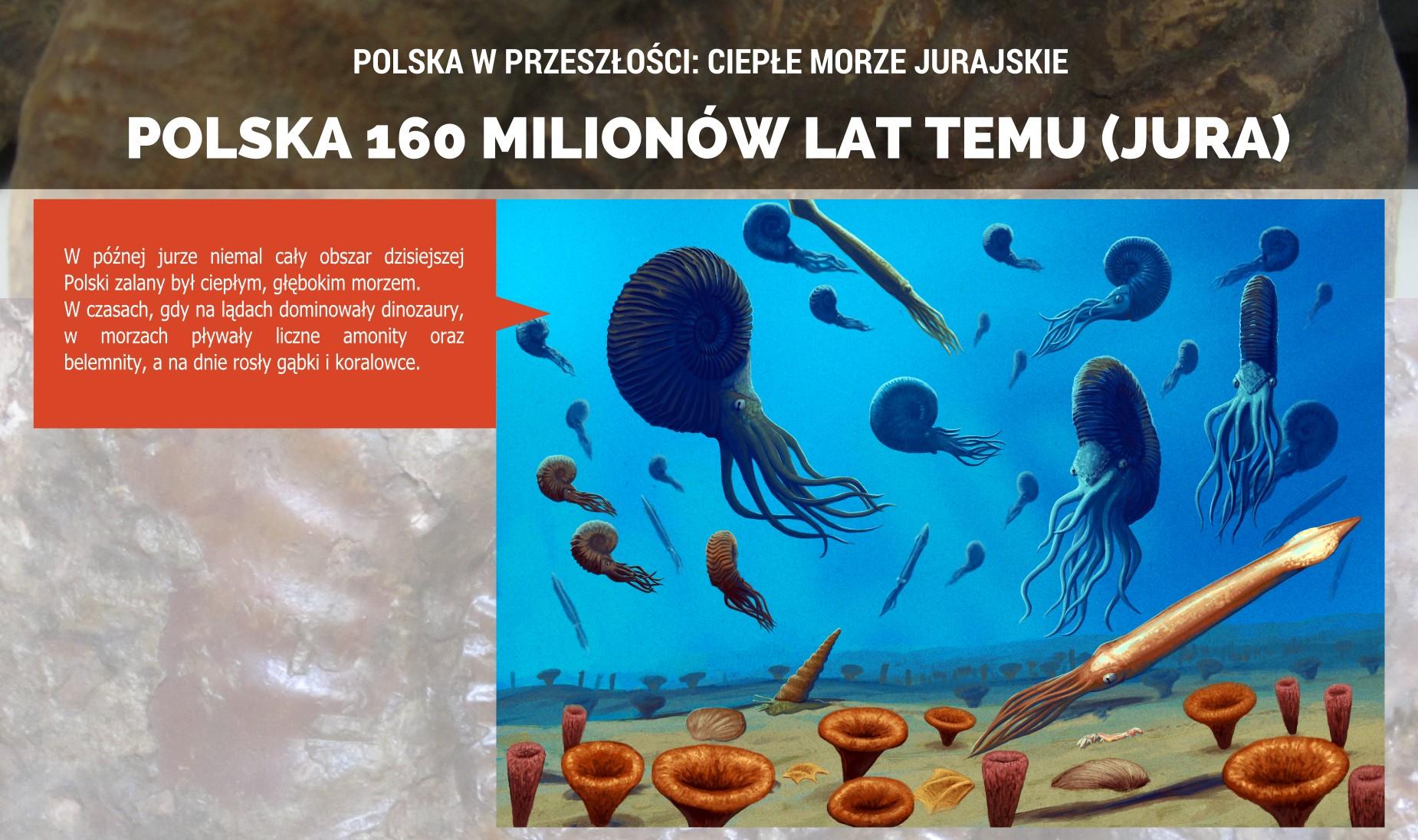 Jurajskie morze na terenie Polski - plakat.