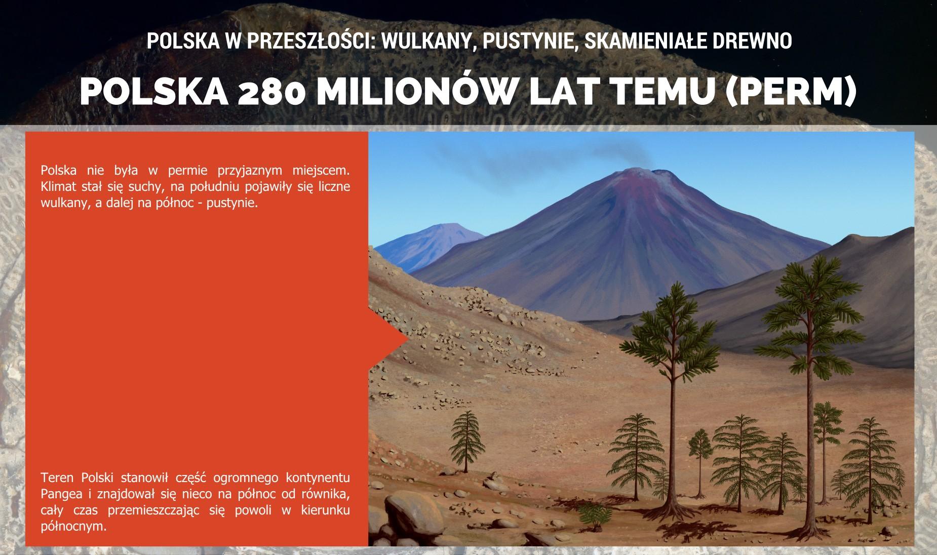 Polska w permie: krajobraz i roślinnosć dzisiejszego Dolnego Śląska - plakat.