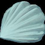 Ramienionóg Stegerhynchus (sylur Gotlandii) -- rys. Edyta Felcyn.