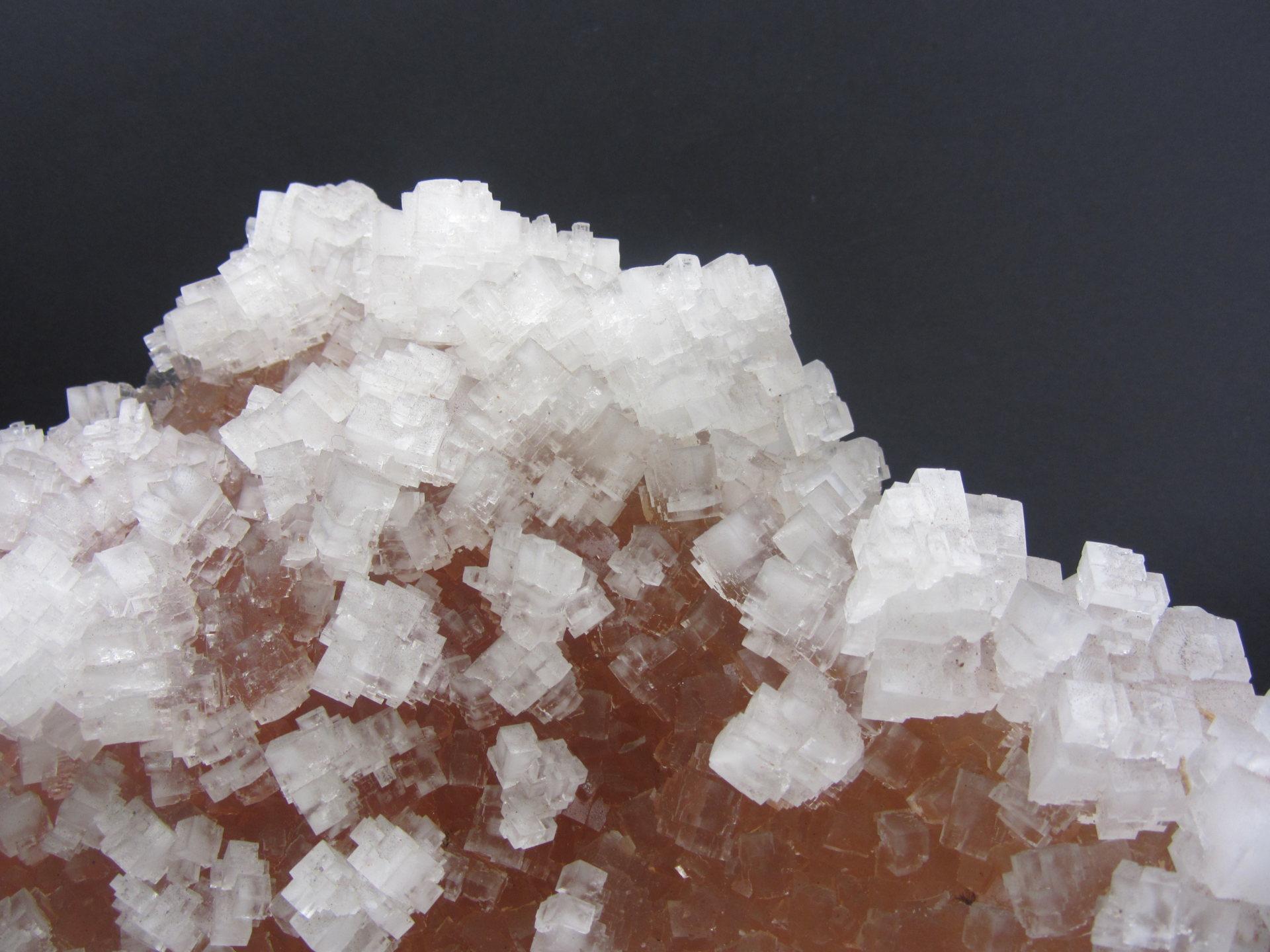Kryształy minerału halitu, czyli soli kamiennej.