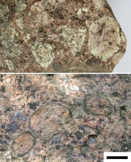 Granity rapakiwi z rejonu Wysp Alandzkich.