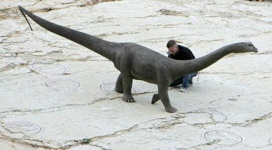 Ślady dinozaurów.