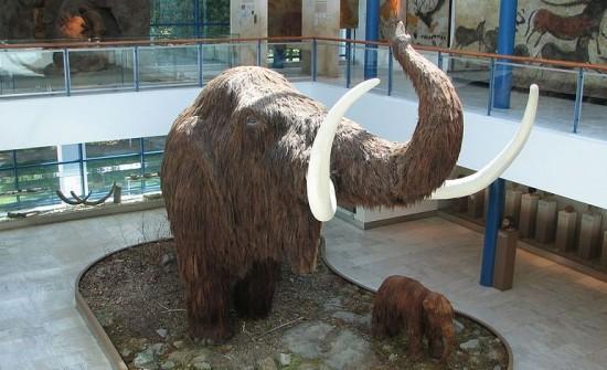 Model mamuta.