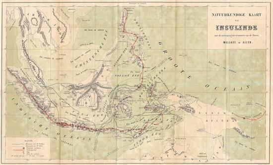 Archipelag Malajski z zaznaczonymi trasami podróży Alfreda Wallace.