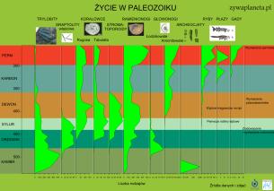 Życie w paleozoiku