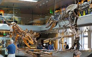 Dzieje dinomanii, czyli o sukcesie dinozaurów w kulturze popularnej