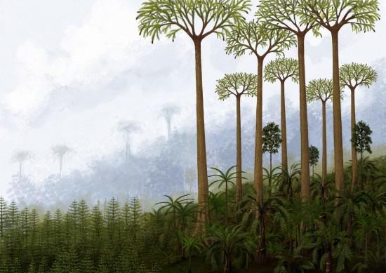 Polska w karbonie, 325 mln lat temu. Równikowe lasy, które dały początek złożom węgla kamiennego (rys. Edyta Felcyn).
