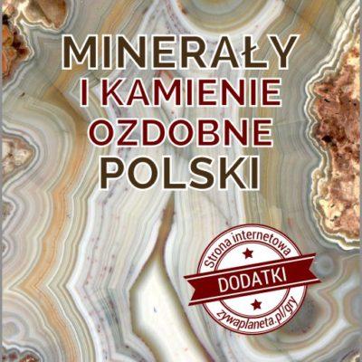 """Gra """"Minerały i kamienie ozdobne Polski""""."""