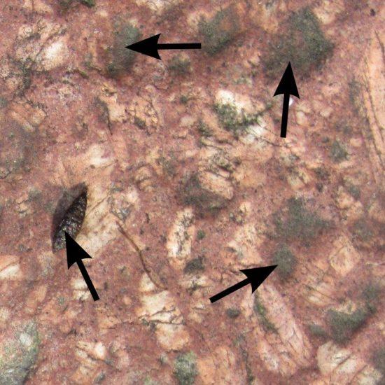 Kryształy kwarcu tkwiące w porfirze (oznaczone strzałkami).