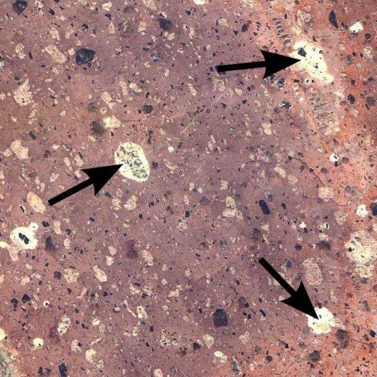 Kryształy skaleni znajdujące się w skale magmowej wylewnej - porfirze.