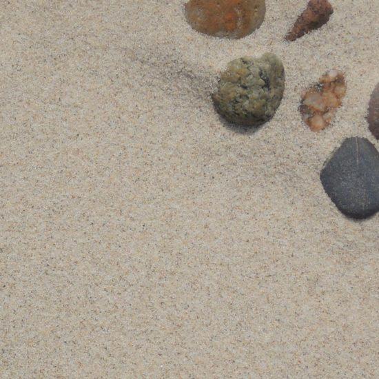 Piasek (skała osadowa okruchowa) na bałtyckiej plaży. Fot. Alicja Szarzyńska.