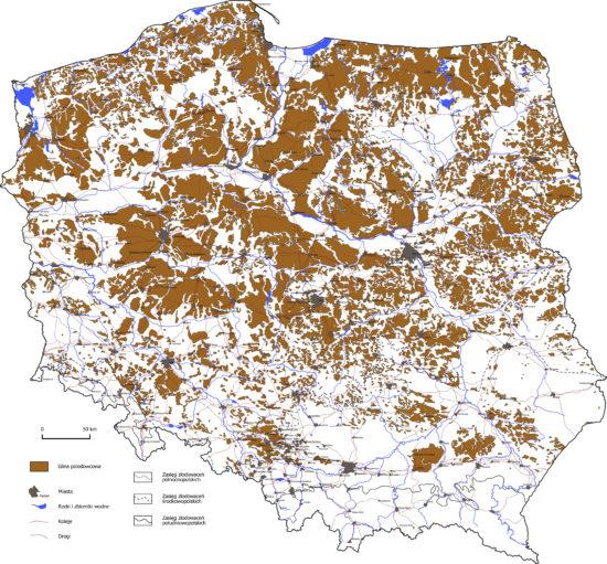 Wysoczyzny morenowe i plejstoceńskie gliny lodowcowe na terenie Polski.