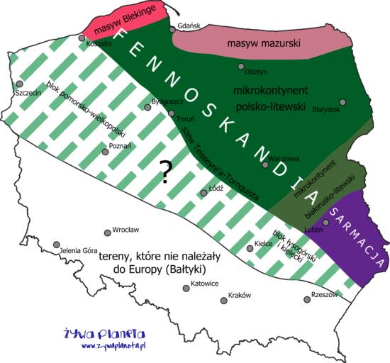 Jednostki tektoniczne platformy wschodnioeuropejskiej.