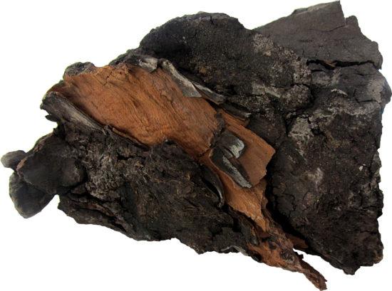 Węgiel brunatny z Bełchatowa.