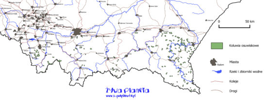 Koluwia osuwiskowe (ślady dawnych osuwisk) na terenie Karpat fliszowych.