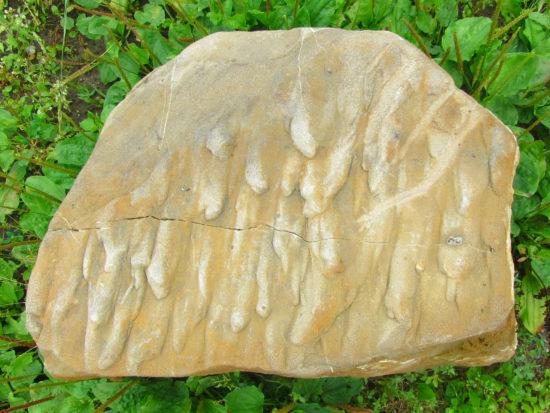 Odlewy jamek wirowych w piaskowcu magurskim (Szczawnica).