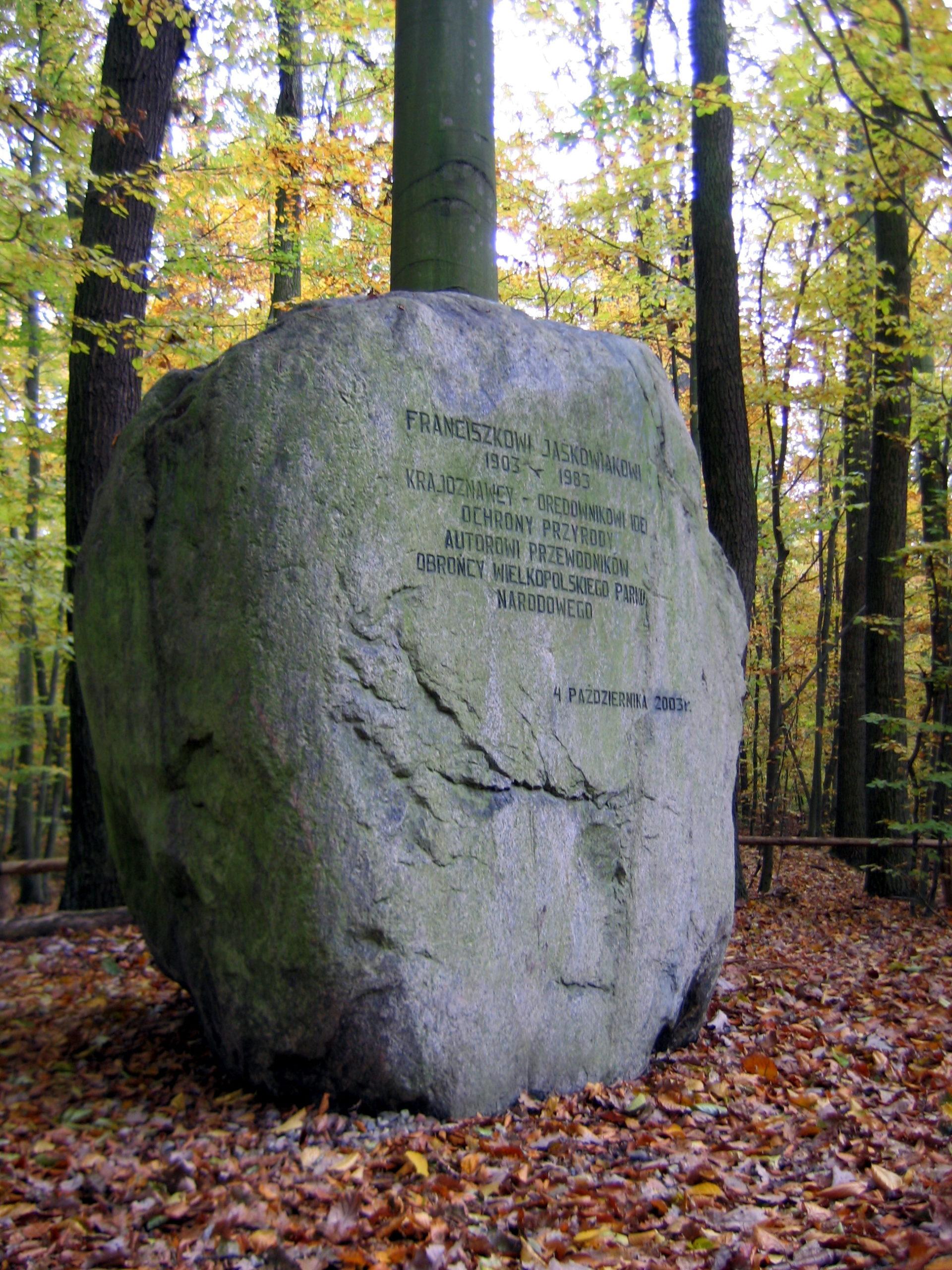 Głaz narzutowy w Wielkopolskim Parku Narodowym.
