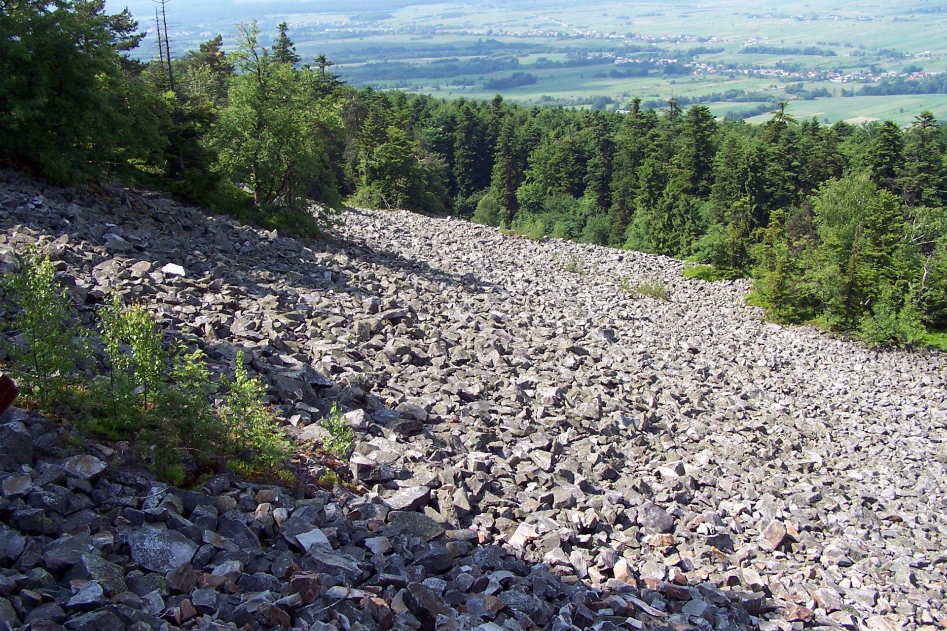 Rumowisko skalne (gołoborze) na Świętym Krzyżu w Górach Świętokrzyskich.